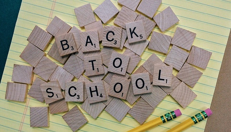 Back to School Lice Removal